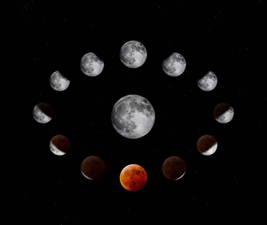 Phases de la lune pour jardiner