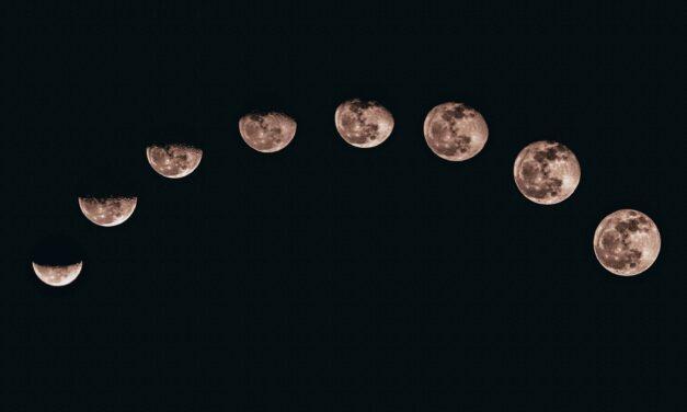 Jardiner avec la lune en 2021 : le meilleur calendrier lunaire en ligne