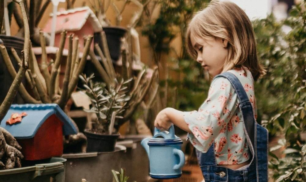 Collection printemps été Gémo enfant