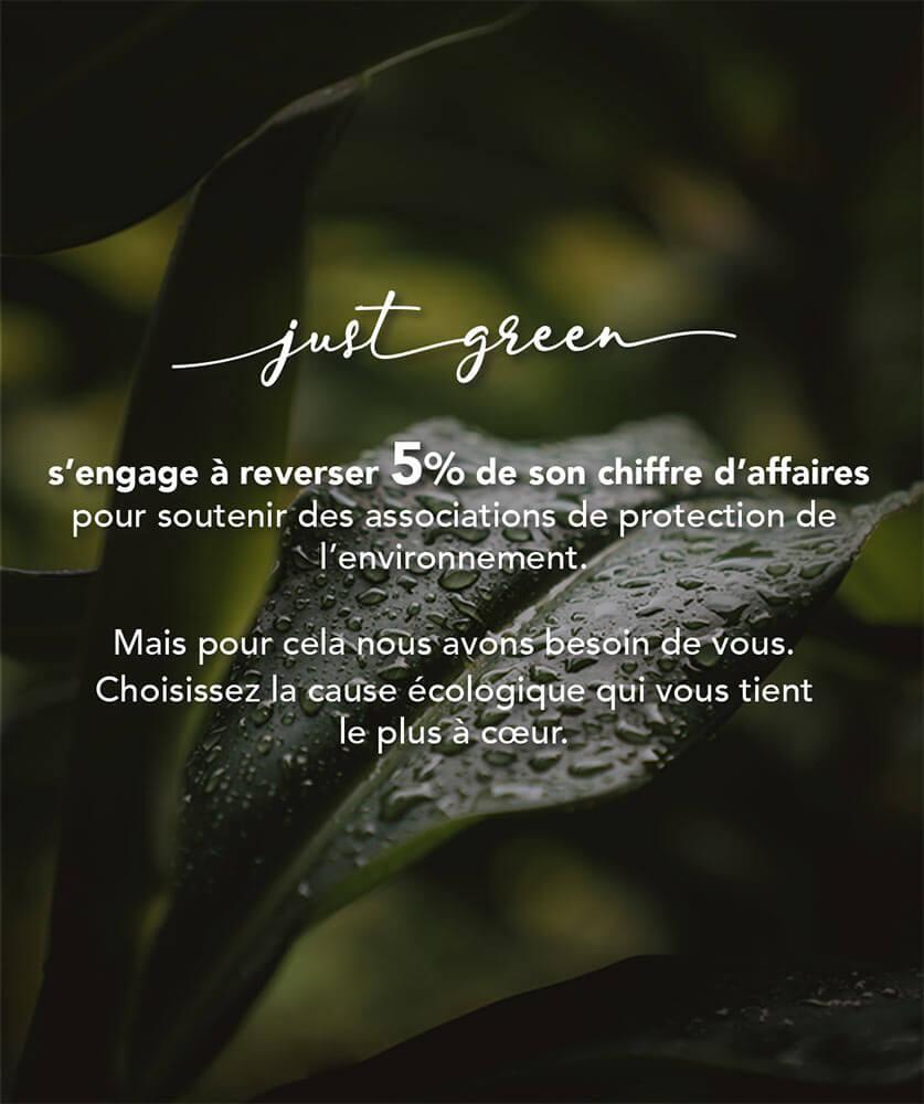 Just Green valeurs