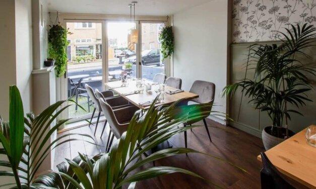 10 idées de décoration d'intérieur avec des plantes