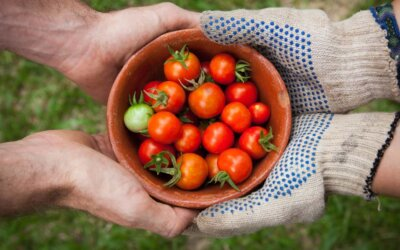 Idée cadeau jardinage : nos suggestions